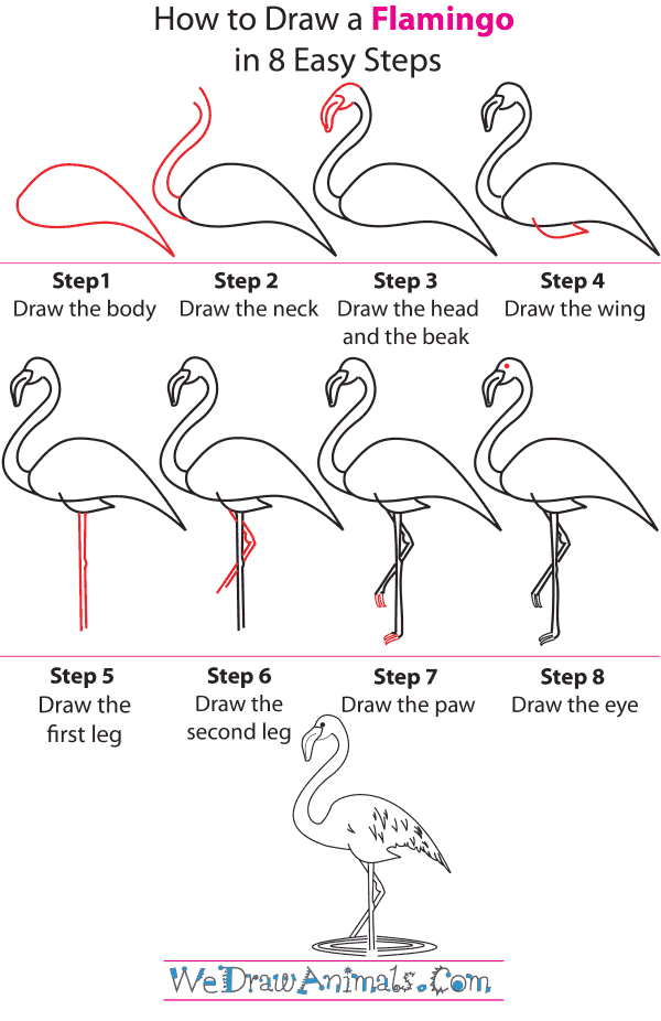 How to draw a flamingo step by step tutorial