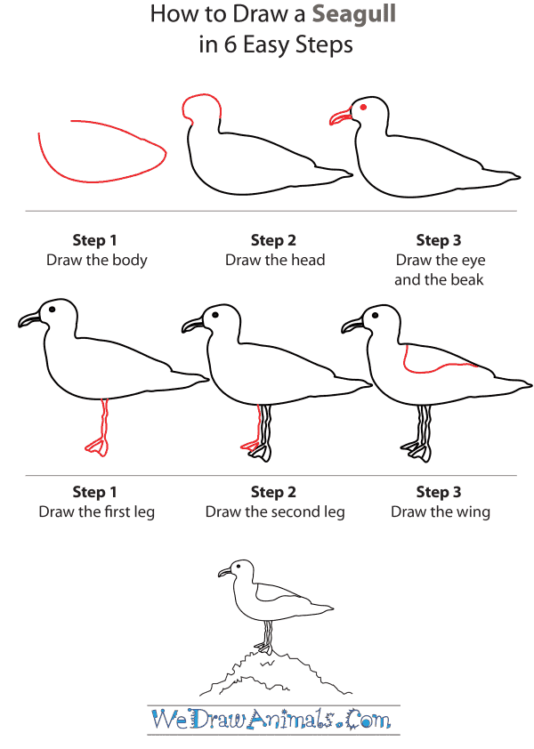 how to draw a seagull step by step tutorial