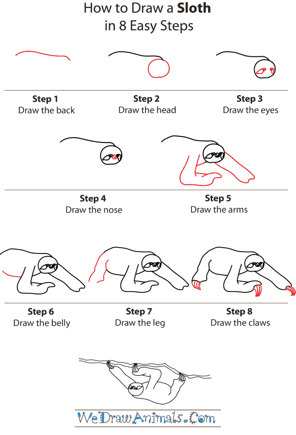 how to draw a sloth step by step tutorial