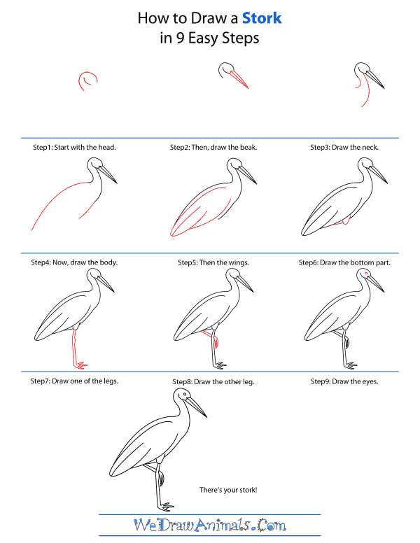 How To Draw A Stork - Step-by-Step Tutorial