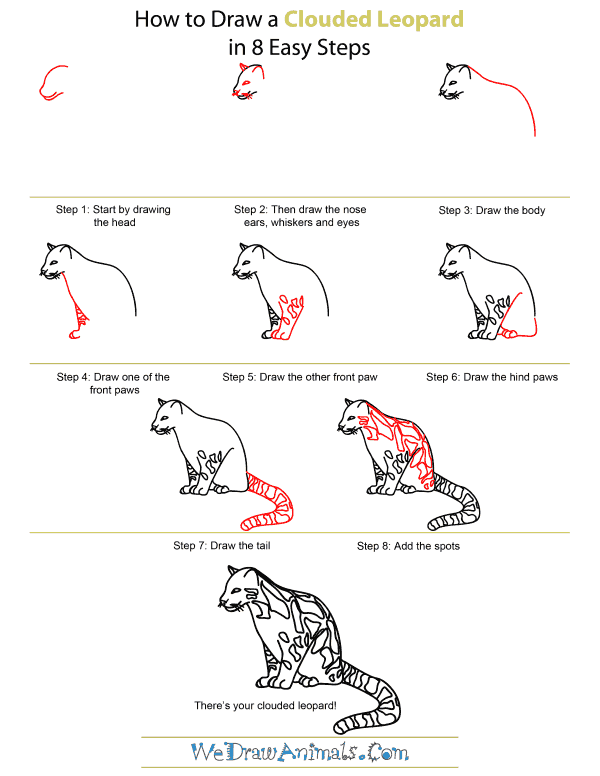 How To Draw A Clouded Leopard - Step-by-Step Tutorial