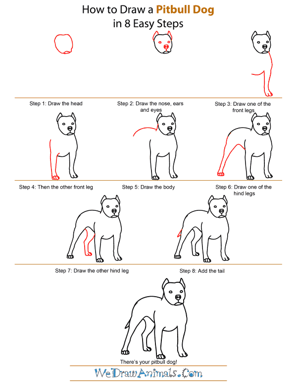 How To Draw A Pitbull Dog - Step-by-Step Tutorial