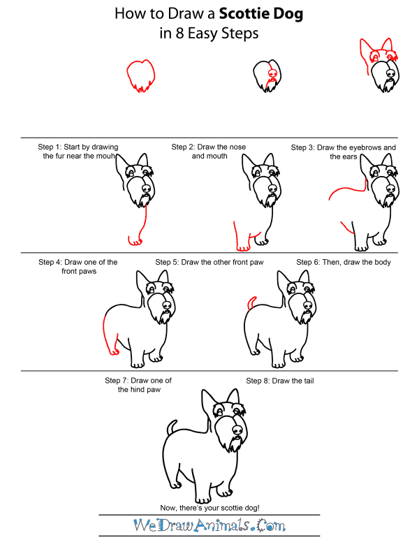How To Draw A Scottie Dog - Step-by-Step Tutorial