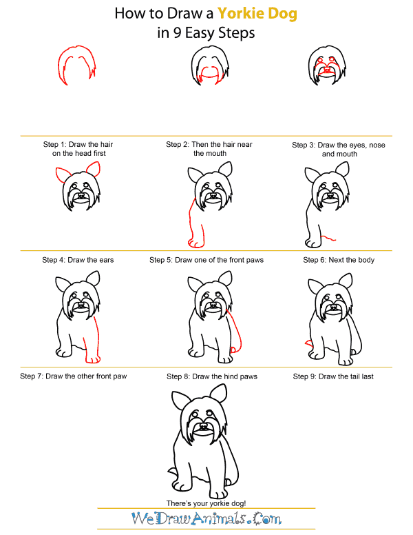 How To Draw A Yorkie Dog - Step-by-Step Tutorial