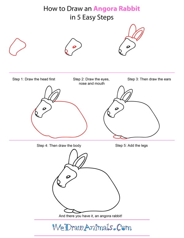 How To Draw An Angora Rabbit - Step-by-Step Tutorial