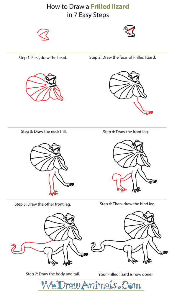 How To Draw A Frilled Lizard - Step-By-Step Tutorial