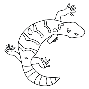 gila monster drawing photo9