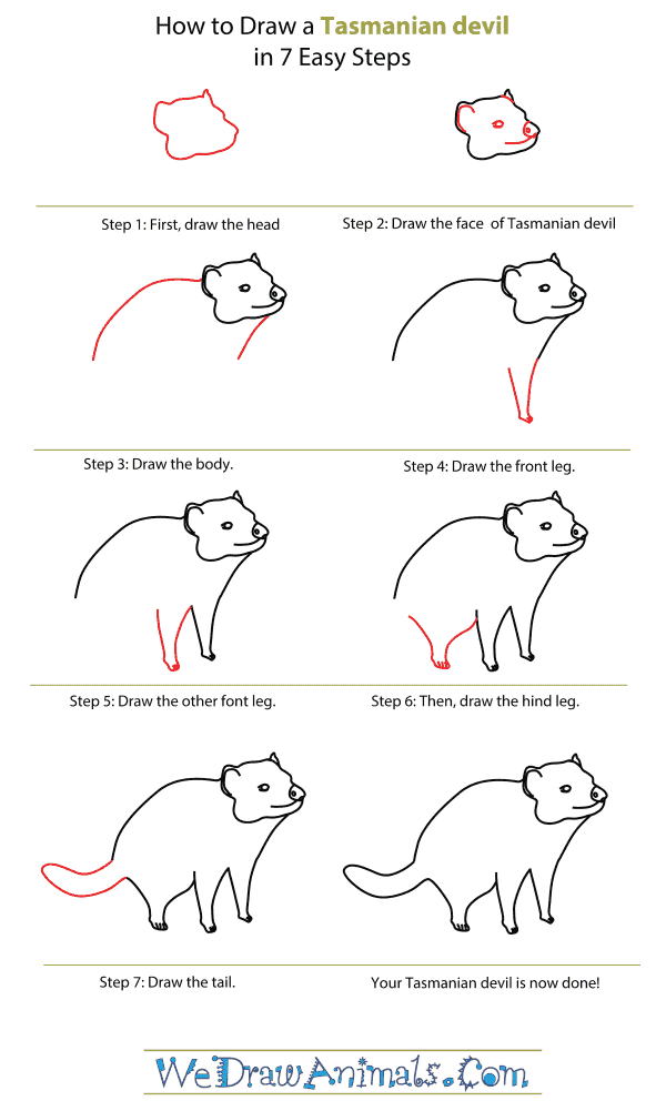How To Draw A Tasmanian Devil - Step-By-Step Tutorial