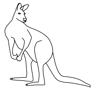 How To Draw A Red Kangaroo - Step-By-Step Tutorial