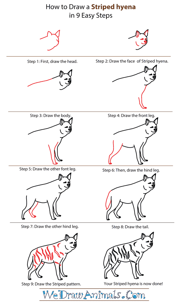 How To Draw A Striped hyena - Step-By-Step Tutorial