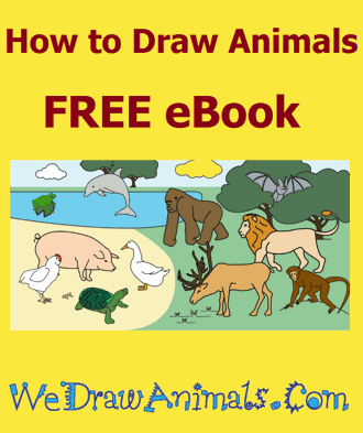 how-to-draw-animals-ebook-330
