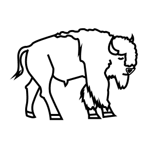 How To Draw an American Bison - Step-By-Step Tutorial