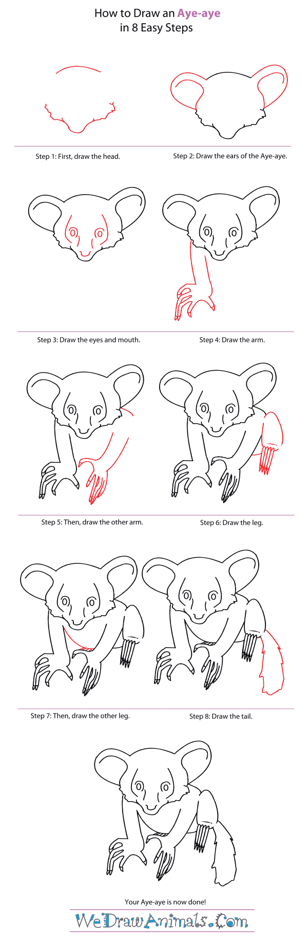 How to Draw an Aye-Aye - Step-By-Step Tutorial
