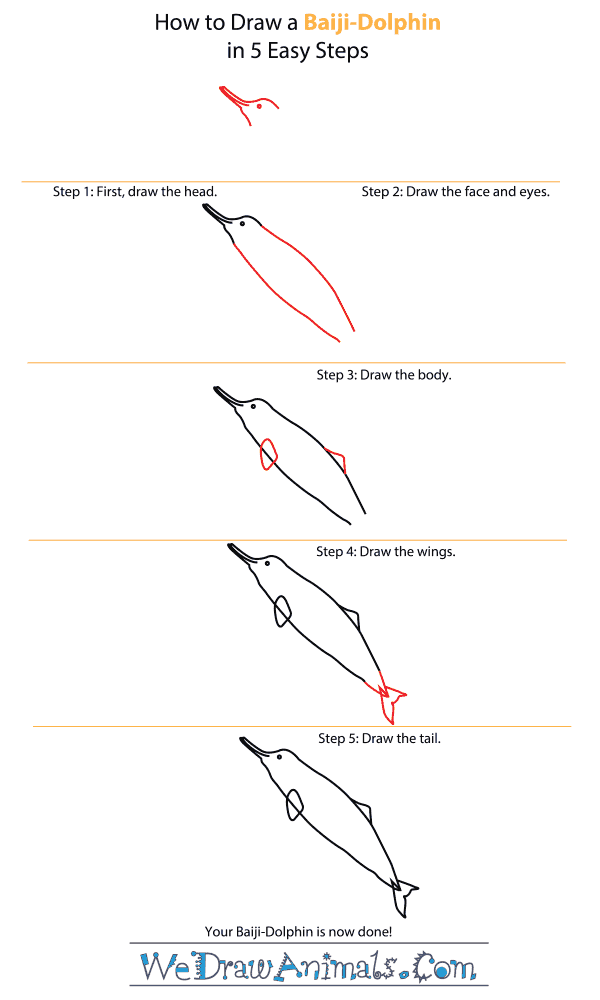 How to Draw a Baiji - Step-by-Step Tutorial