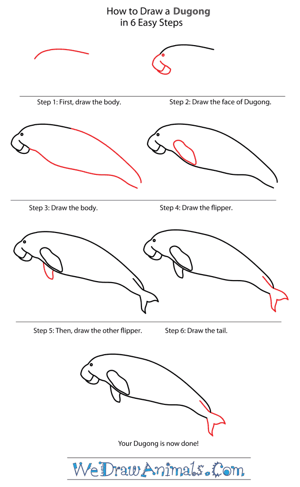 How to Draw a Dugong - Step-By-Step Tutorial