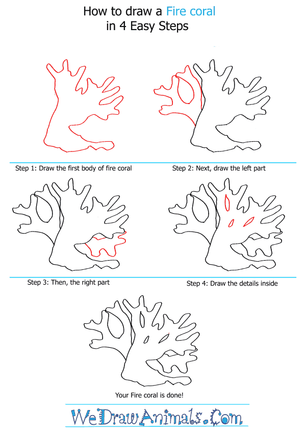 How to Draw a Fire Coral - Step-by-Step Tutorial
