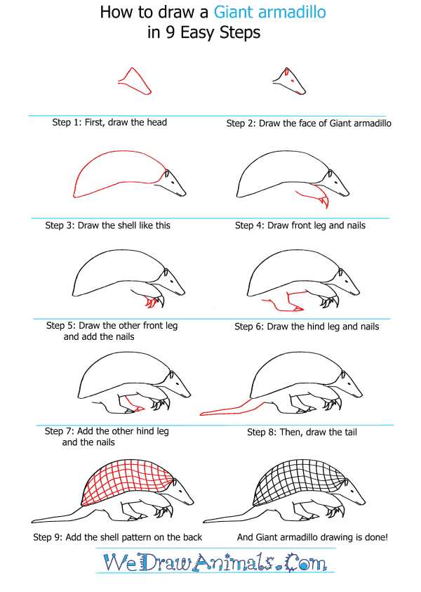 How to Draw a Giant Armadillo - Step-by-Step Tutorial