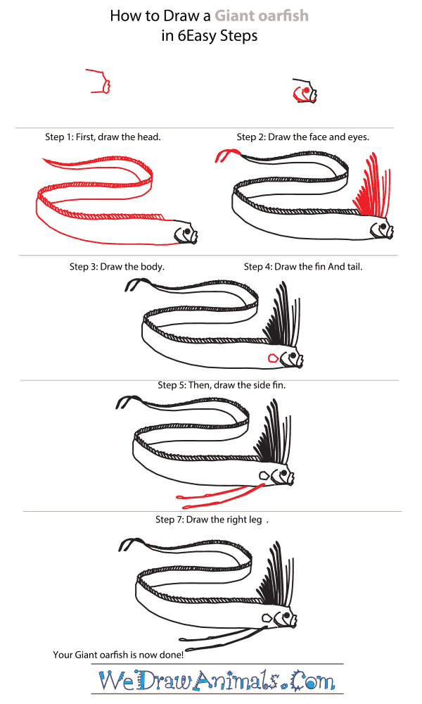 How to Draw a Giant Oarfish - Step-By-Step Tutorial