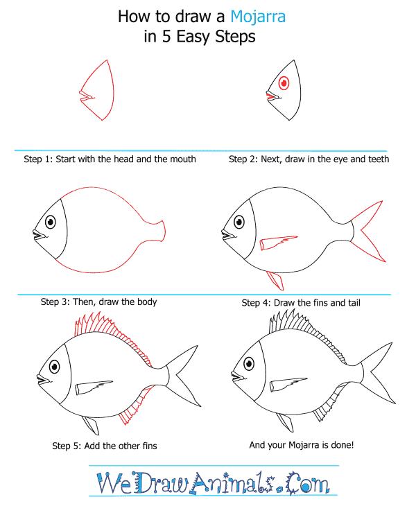 How to Draw a Mojarra - Step-by-Step Tutorial