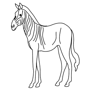 Learn How to Draw Animals – Step-by-Step — Page 102