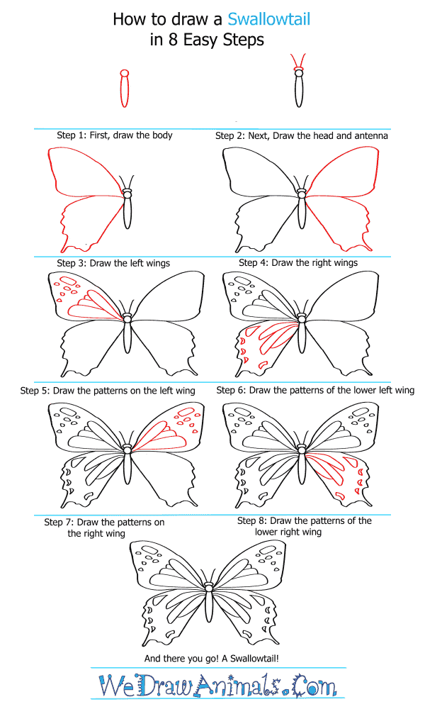 How to Draw a Swallowtail - Step-by-Step Tutorial