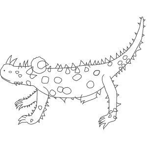 How To Draw a Thorny Devil - Step-By-Step Tutorial