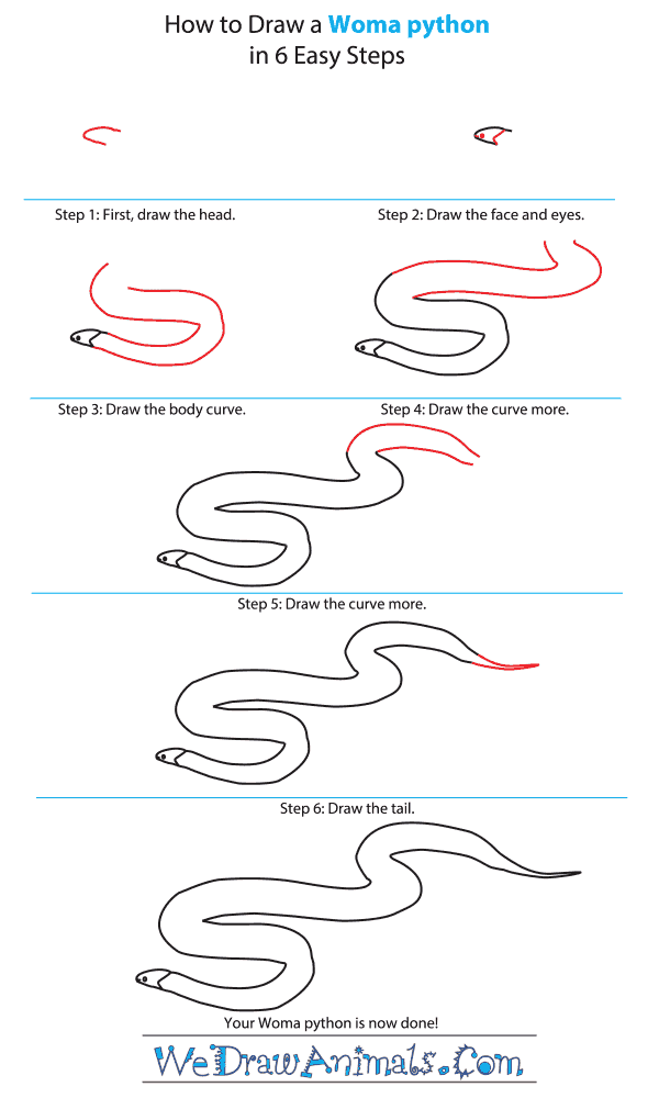 How to Draw a Woma Python - Step-by-Step Tutorial