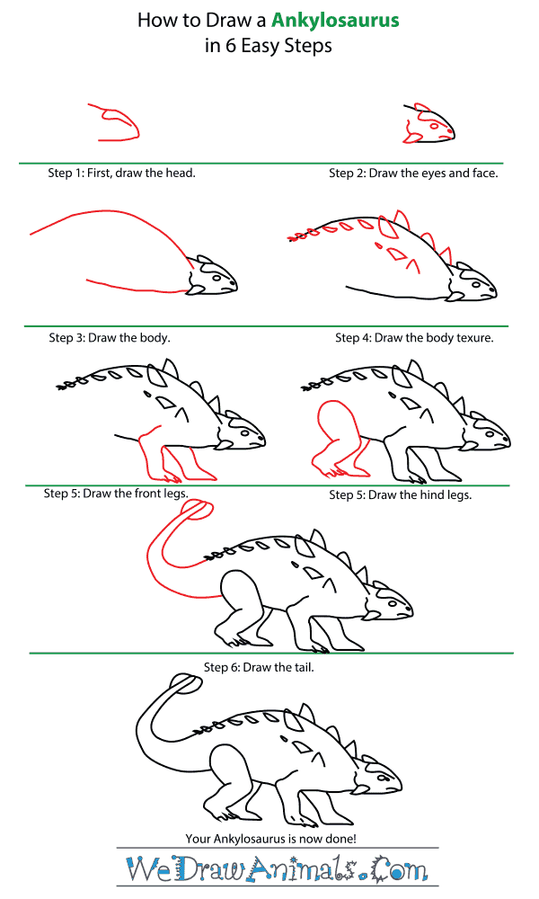 How to Draw an Ankylosaurus - Step-by-Step Tutorial