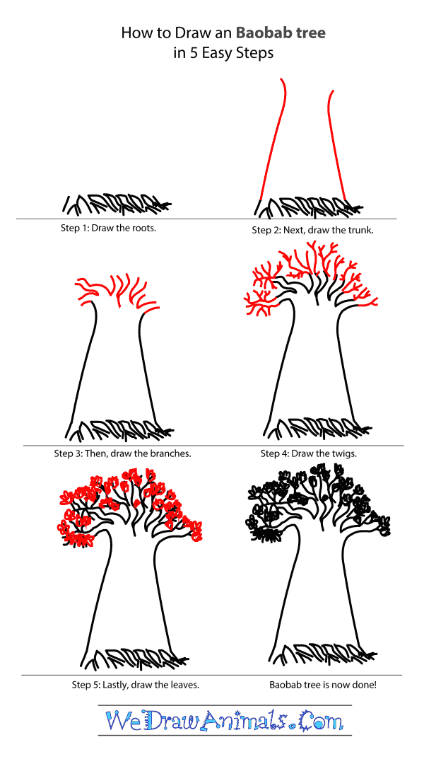 How to Draw a Baobab Tree - Step-by-Step Tutorial