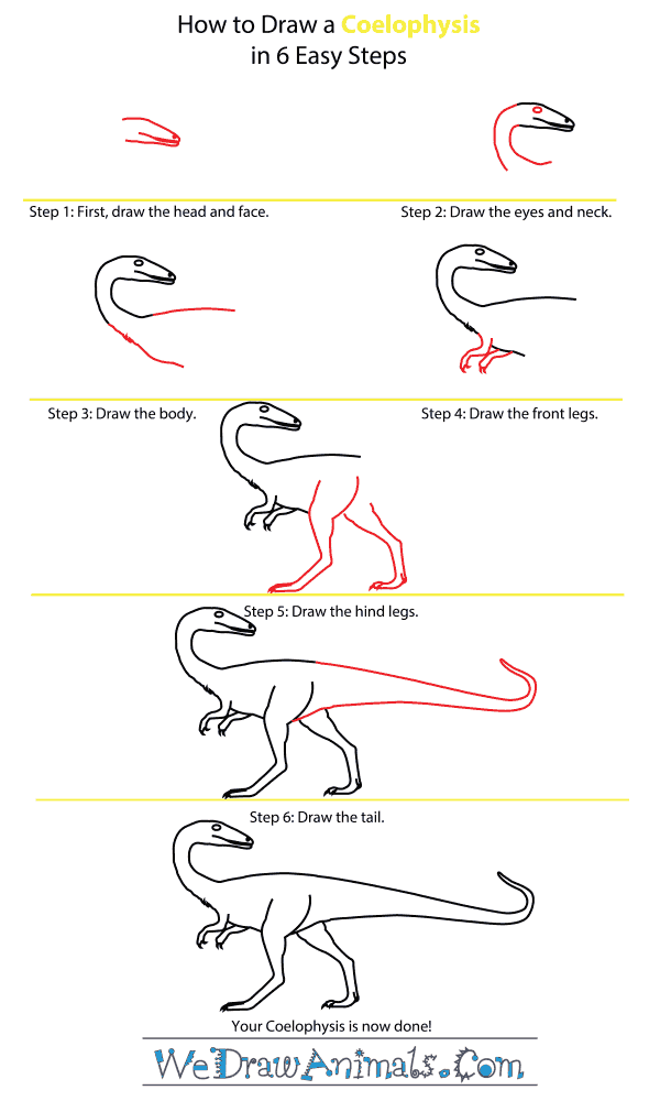 How to Draw a Coelophysis - Step-by-Step Tutorial