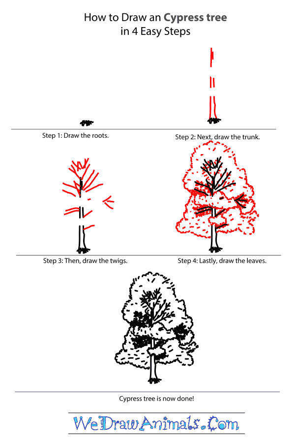 How to Draw a Cypress Tree - Step-by-Step Tutorial