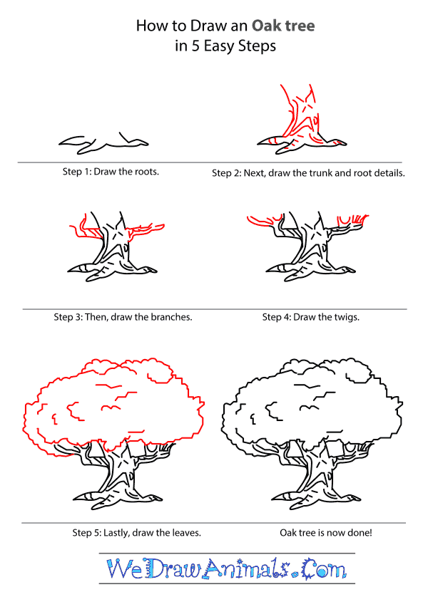 How to Draw an Oak Tree - Step-by-Step Tutorial