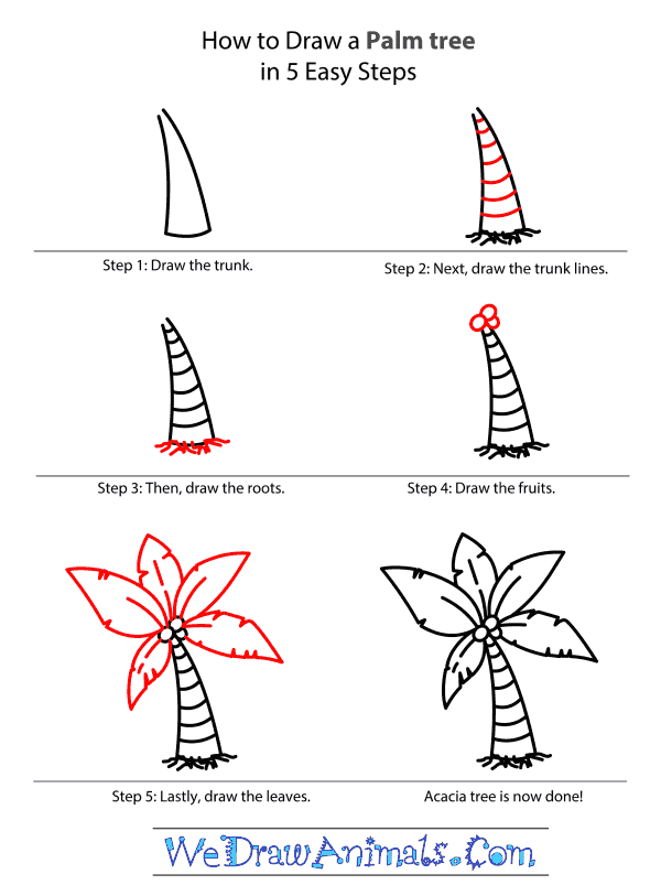 How to Draw a Palm Tree - Step-by-Step Tutorial