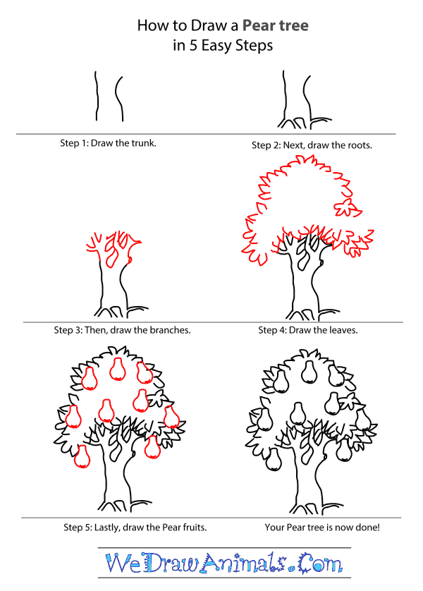 How to Draw a Pear Tree - Step-by-Step Tutorial