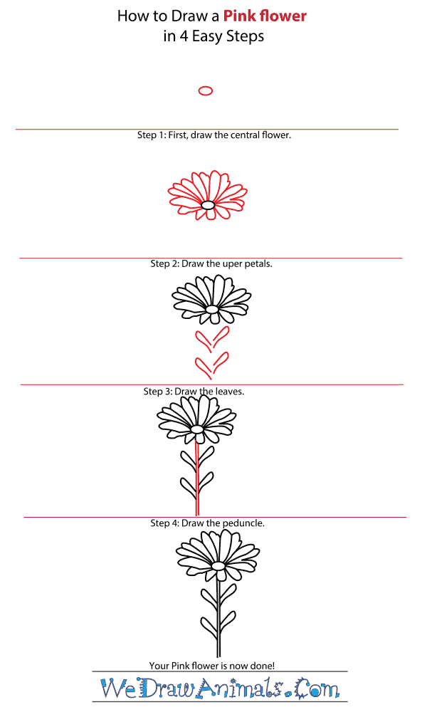 How to Draw a Pink Flower - Step-by-Step Tutorial