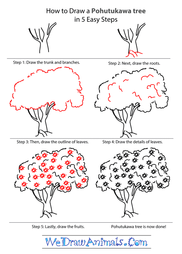 How to Draw a Pohutukawa Tree - Step-by-Step Tutorial