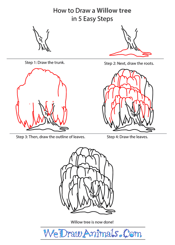 How to Draw a Willow Tree - Step-by-Step Tutorial