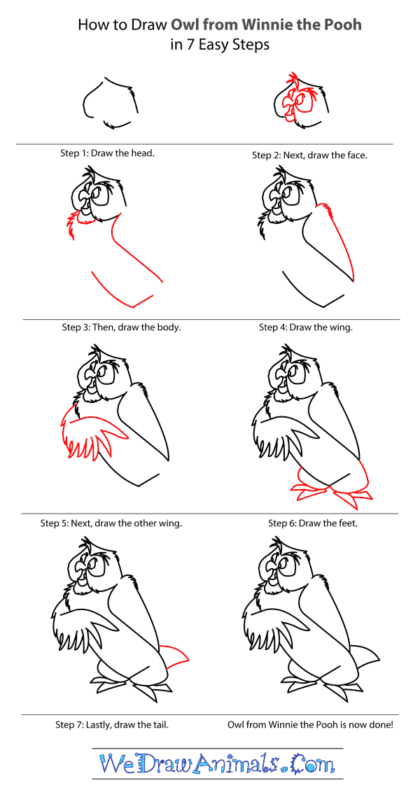 How to Draw Owl From Winnie The Pooh - Step-by-Step Tutorial