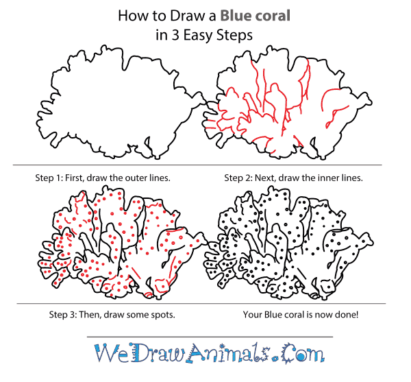 How to Draw a Blue Coral - Step-by-Step Tutorial