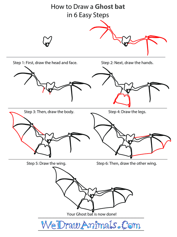How to Draw a Ghost Bat - Step-by-Step Tutorial