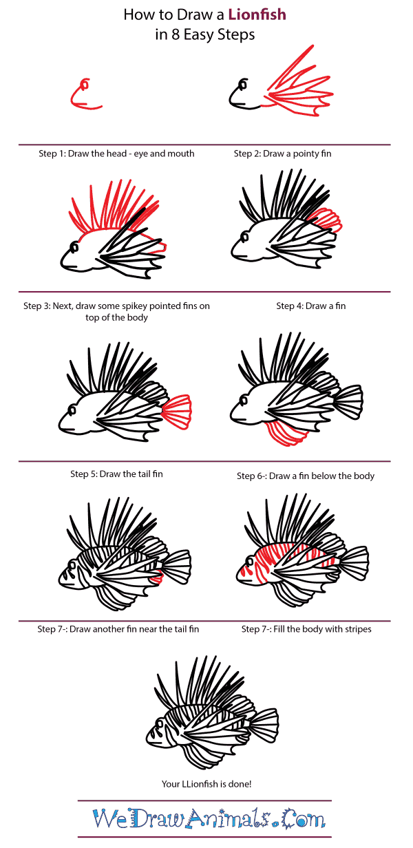 how to draw a lionfish step by step tutorial