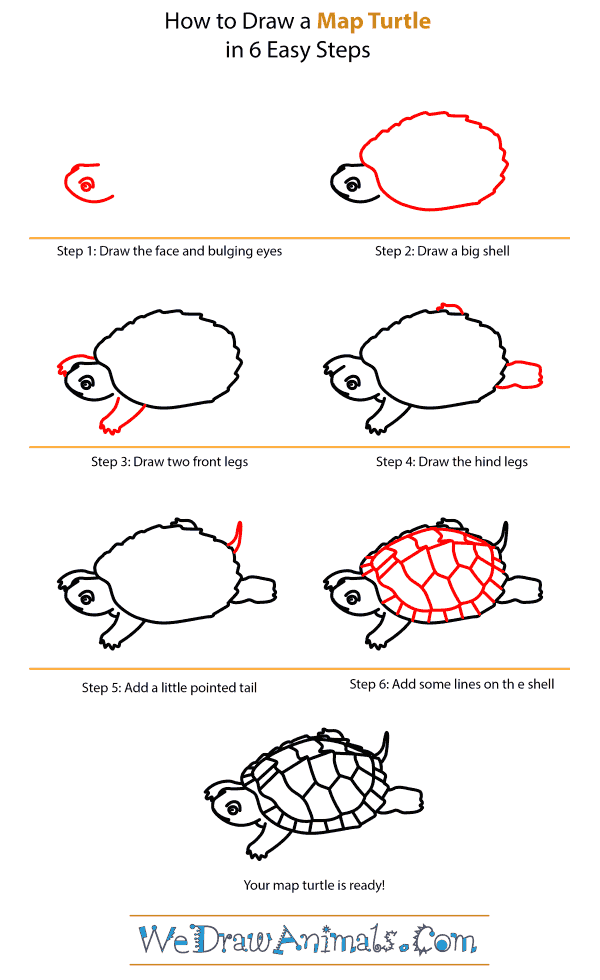 How to Draw a Map Turtle
