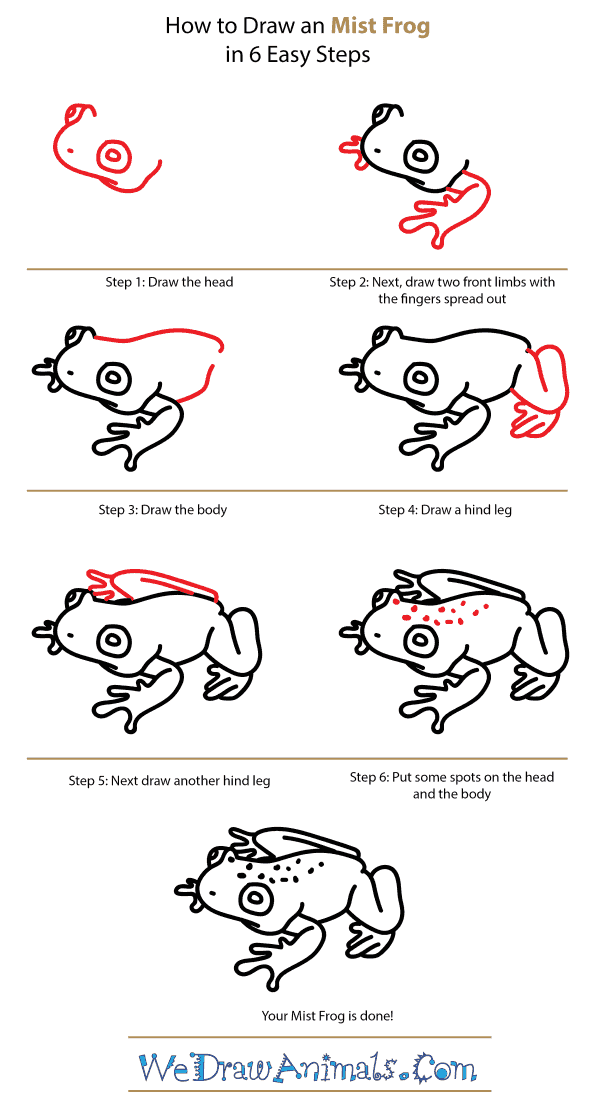 How to Draw a Mist Frog - Step-by-Step Tutorial