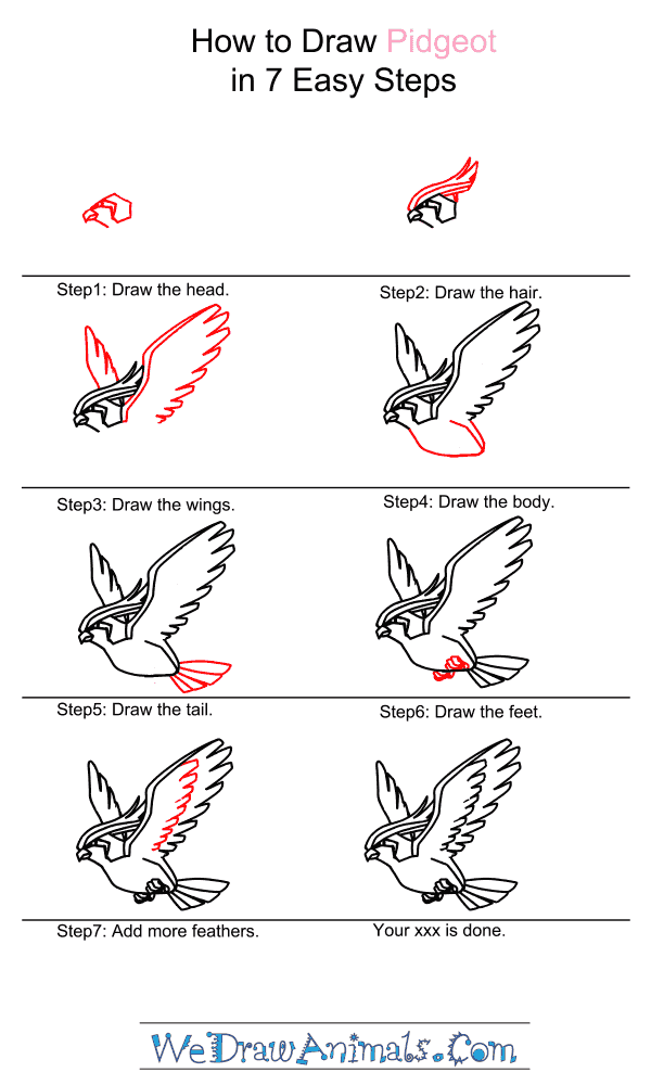 How to Draw Pidgeot - Step-by-Step Tutorial