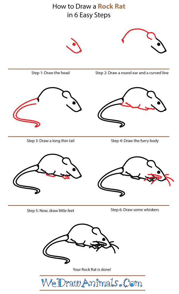 How to Draw a Rock Rat - Step-by-Step Tutorial