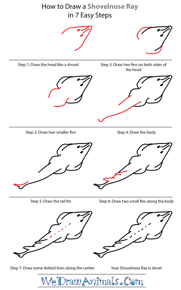 How to Draw a Shovelnose Ray - Step-by-Step Tutorial