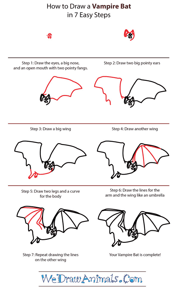 How to Draw a Vampire Bat - Step-by-Step Tutorial