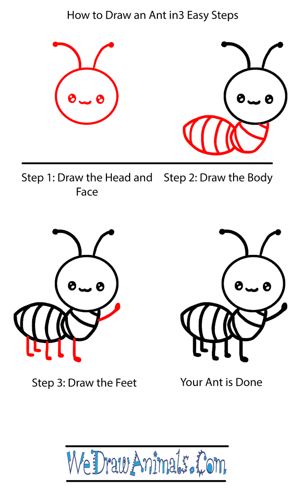 How to Draw a Baby Ant - Step-by-Step Tutorial