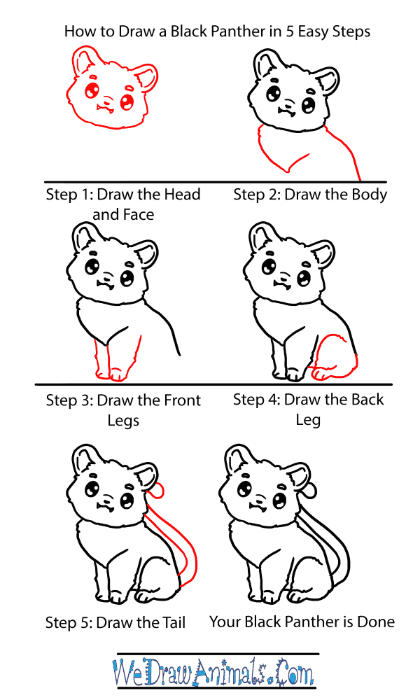 How to Draw a Baby Black Panther - Step-by-Step Tutorial