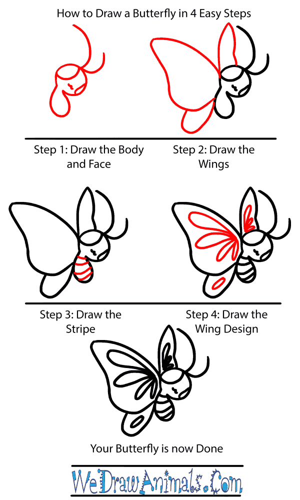 How to Draw a Baby Butterfly - Step-by-Step Tutorial
